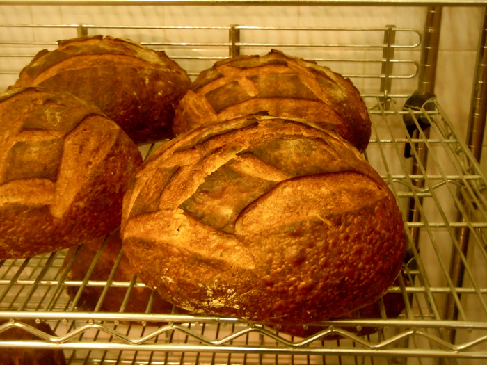 Old World Bread