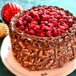 Cranberry Chocolate Cake
